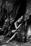 Wood Nymph Artistic Nude Photo by Photographer MSlygh