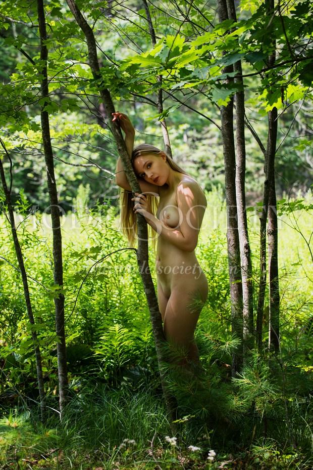 Wood Nymph III Artistic Nude Photo by Photographer Mass Photo Guy