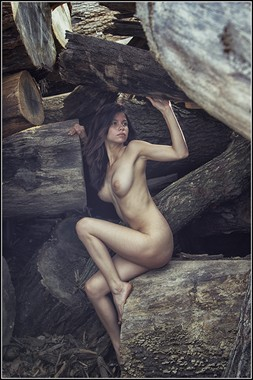 Wood Pile Artistic Nude Photo by Photographer Magicc Imagery