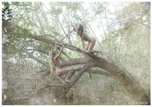 Wood nymphs Artistic Nude Photo by Photographer balm in Gilead