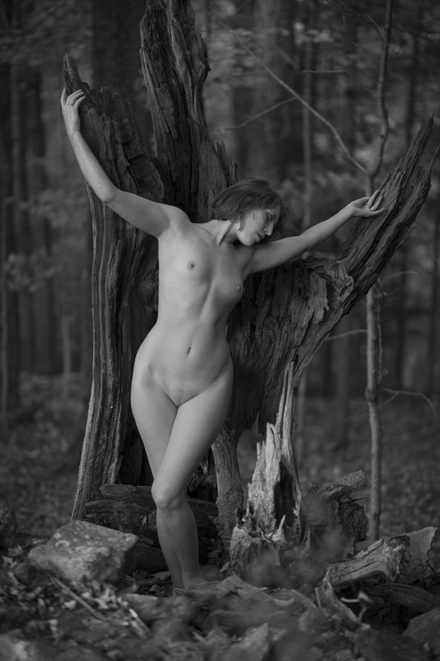 Woodland Grace Artistic Nude Photo by Photographer DKA