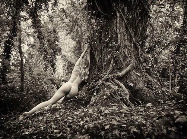 Woodland Nude Artistic Nude Photo by Photographer RayRapkerg