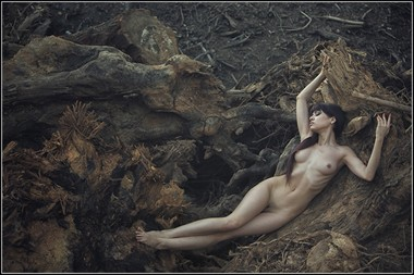 Woodwork Artistic Nude Photo by Photographer Magicc Imagery