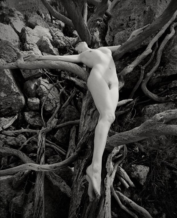 Yellowstone Artistic Nude Artwork by Photographer Christopher Ryan