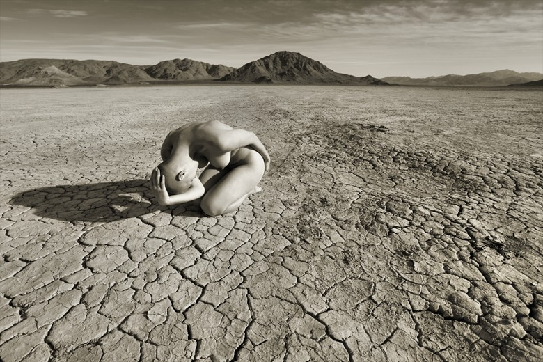 Zenith Artistic Nude Photo by Photographer David Winge