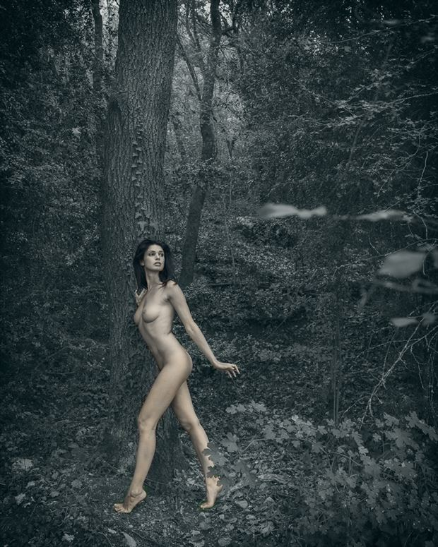 Zoi in leafy forest Artistic Nude Photo by Photographer Miguel Soler Roig