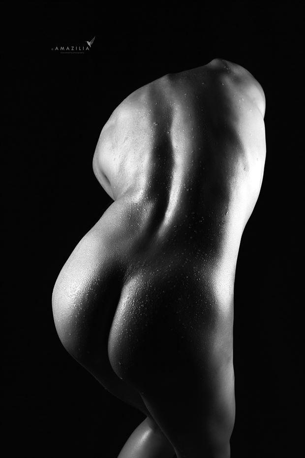 a curvaceous back artistic nude photo by photographer amazilia photography