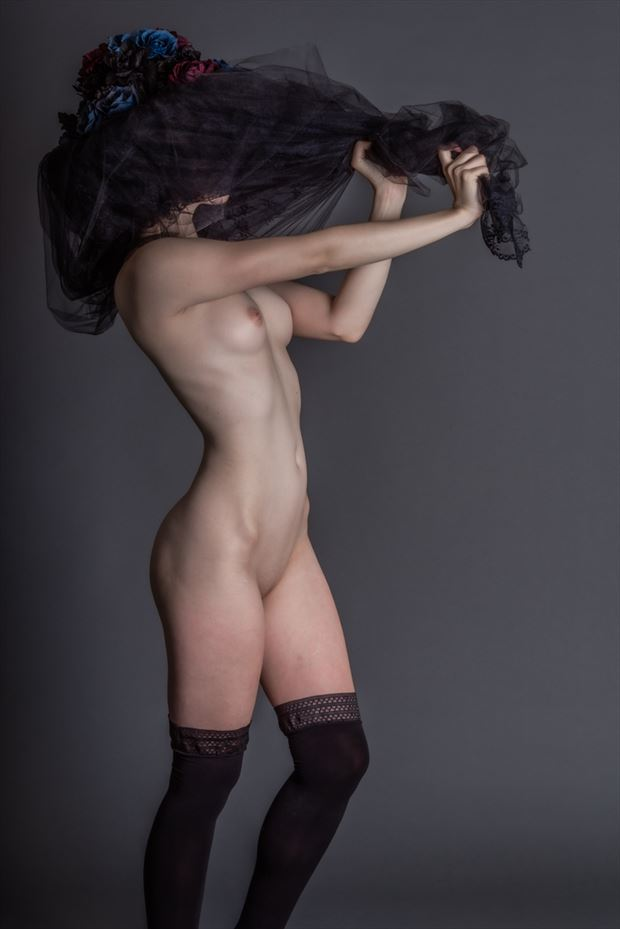a woman and a veil artistic nude photo by model ahna green