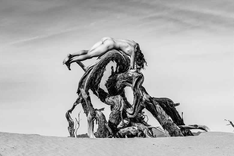 abandoned artistic nude photo by model shawn alfie