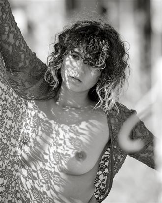 abi lace and shadows artistic nude photo by photographer jefflamarche
