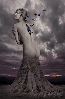 abstract fantasy photo by photographer chuckarelei