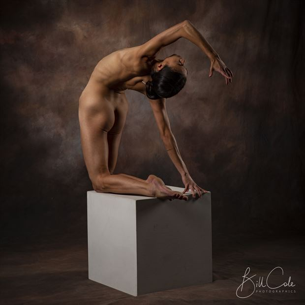 ana on a box artistic nude photo by photographer bill cole
