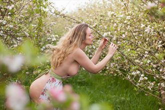 apple blossom fantasy photo by model muse