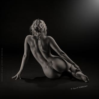arielle 139 artistic nude artwork by photographer cyril torrent