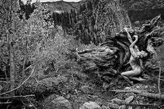 art artistic nude photo by photographer danwarnerphotography