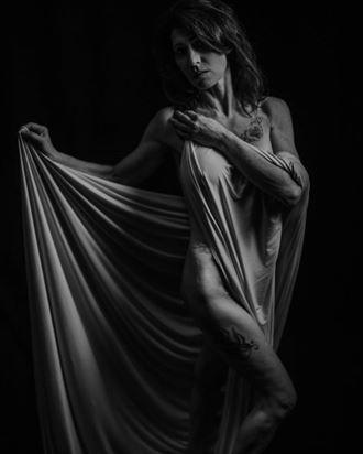 artistic nude abstract artwork by model phoenix skye