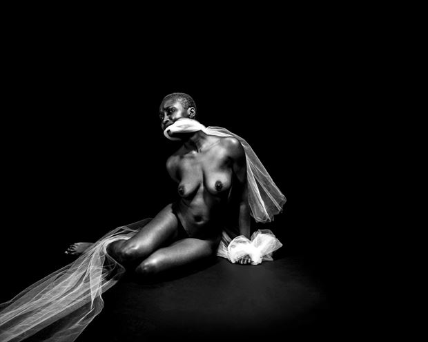 artistic nude abstract artwork by photographer daniel meshel