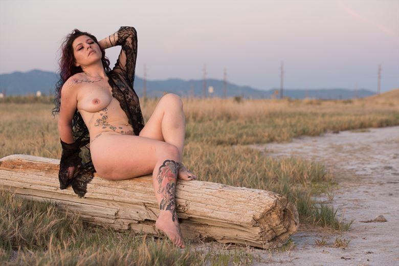 artistic nude erotic photo by model phoenix