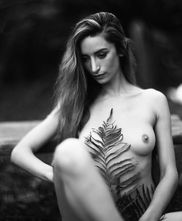 artistic nude erotic photo by photographer dwayne martin