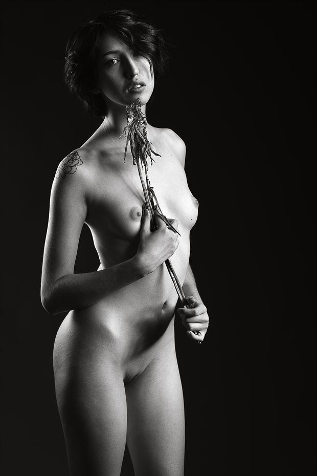 artistic nude figure study photo by photographer depa kote