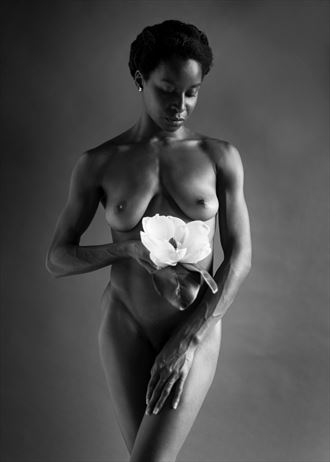 artistic nude figure study photo by photographer reynaldo leal