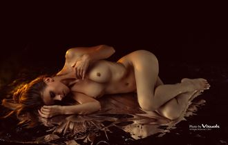 artistic nude glamour photo by photographer visuals