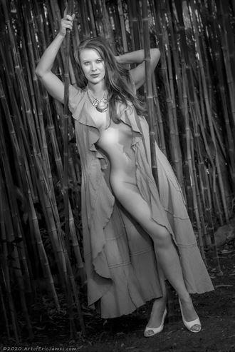 artistic nude lingerie photo by photographer artofericjames com