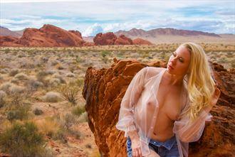 artistic nude lingerie photo by photographer nikzart