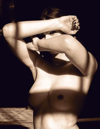 artistic nude natural light artwork by photographer billmanphotography