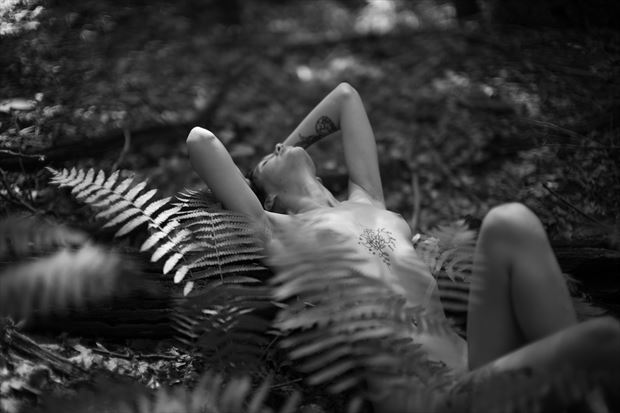 artistic nude nature artwork by photographer archangel images