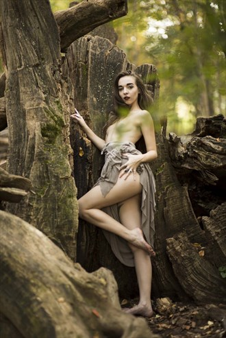 artistic nude nature artwork by photographer randy c photography