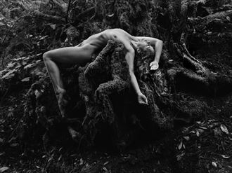 artistic nude nature photo by model meghan claire