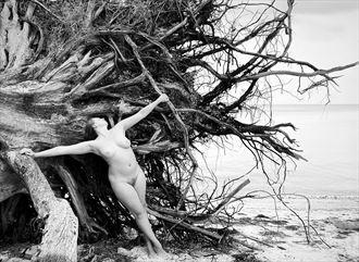artistic nude nature photo by model xaina fairy