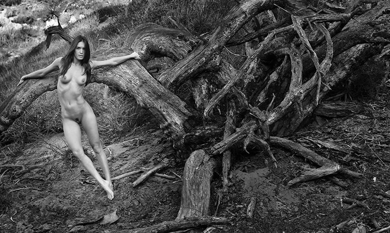 artistic nude nature photo by photographer danwarnerphotography