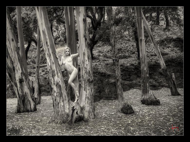 artistic nude nature photo by photographer doug harding