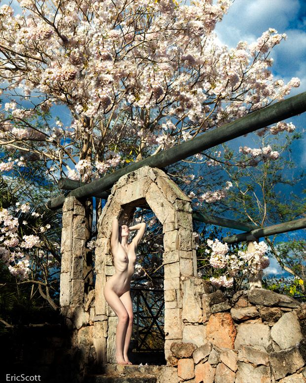 artistic nude nature photo by photographer eric scott