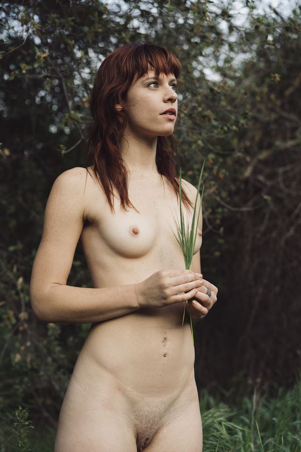 artistic nude nature photo by photographer j diffner