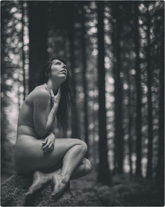 artistic nude nature photo by photographer lanes photography