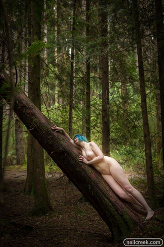 artistic nude nature photo by photographer neil creek