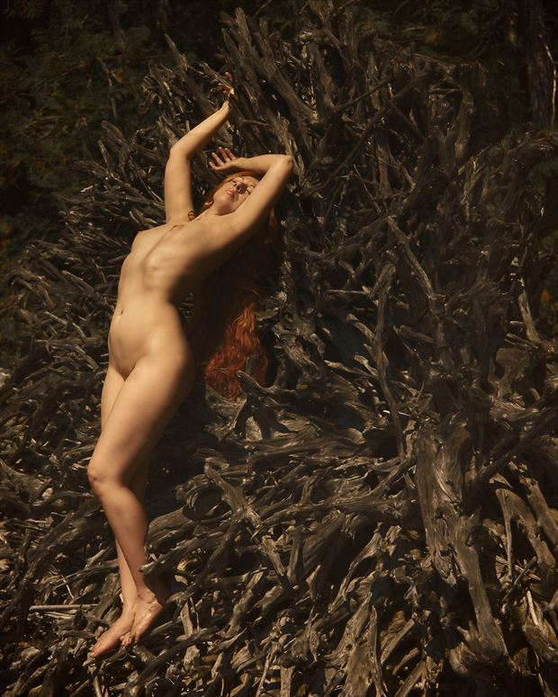 artistic nude nature photo by photographer robin burch