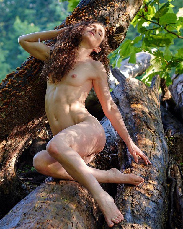 artistic nude nature photo by photographer teb art photo