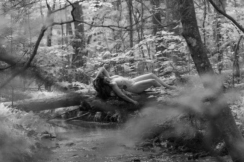 artistic nude nature photo by photographer youngblood