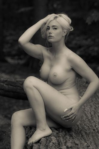 artistic nude photo by photographer northlight