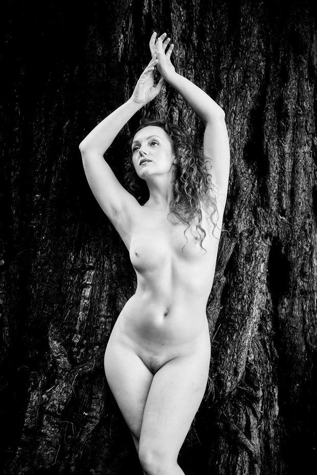 artistic nude sensual photo by photographer alanm