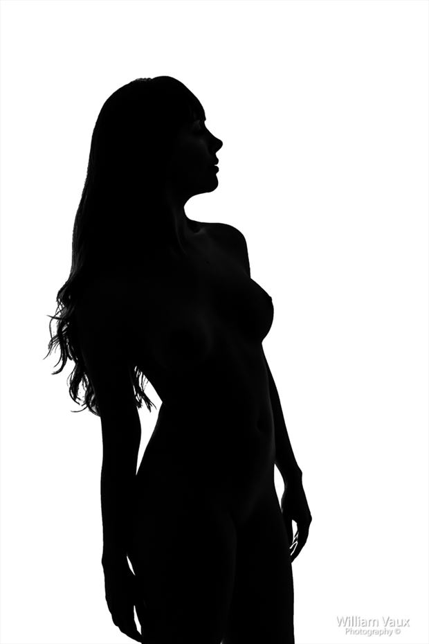 artistic nude silhouette photo by photographer william vaux