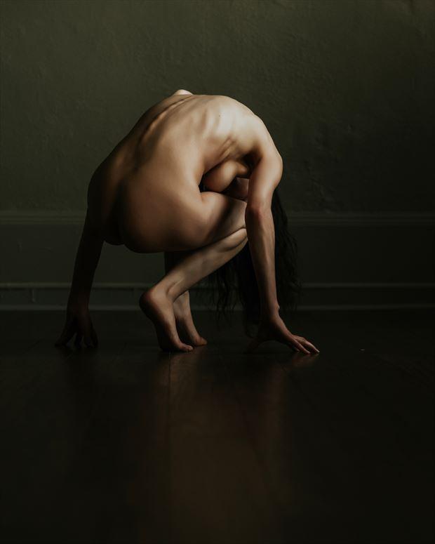 artistic nude studio lighting photo by model vox model
