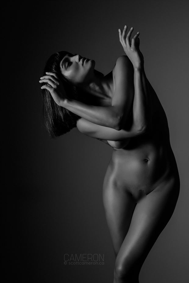 artistic nude studio lighting photo by photographer scottcameron