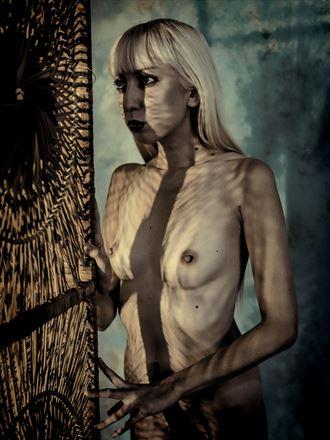 artistic nude studio lighting photo by photographer yevette hendler