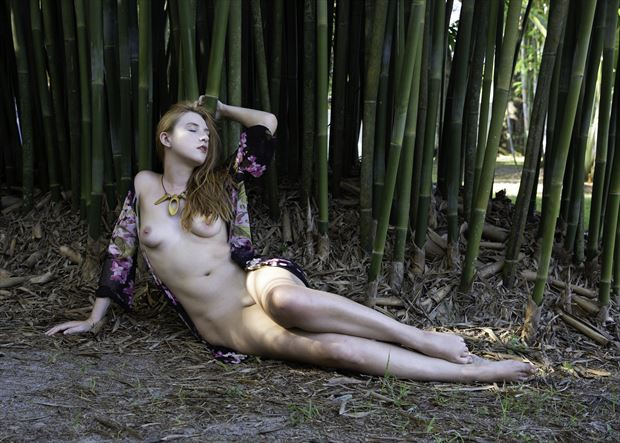 astrid bamboo artistic nude photo by photographer chris gursky