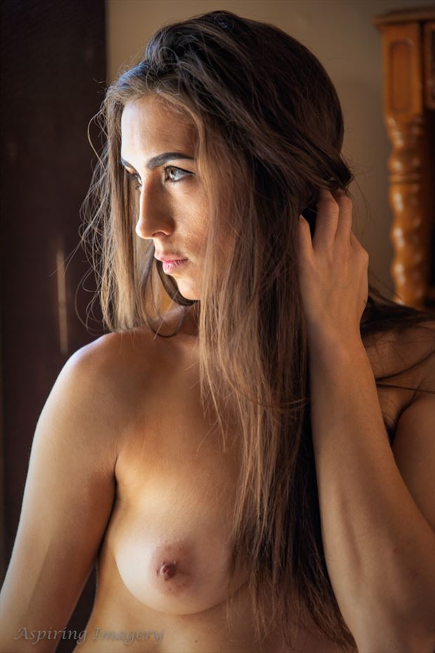 at home no 1 artistic nude photo by photographer aspiring imagery